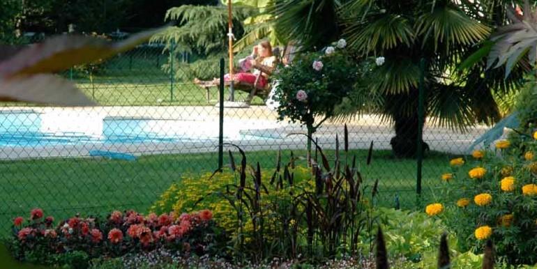 ChatCourant-piscine-opt