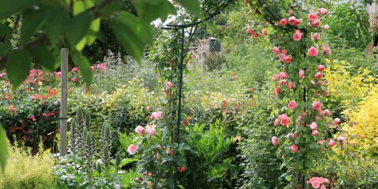 Clos-du-Paradis_Coin-fleuri
