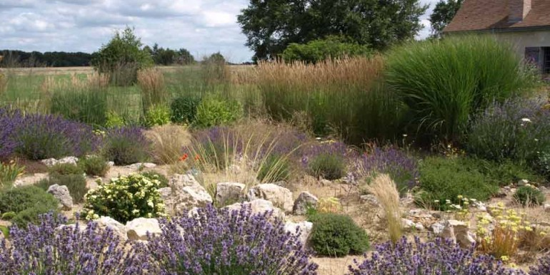 Baulay-dry-garden