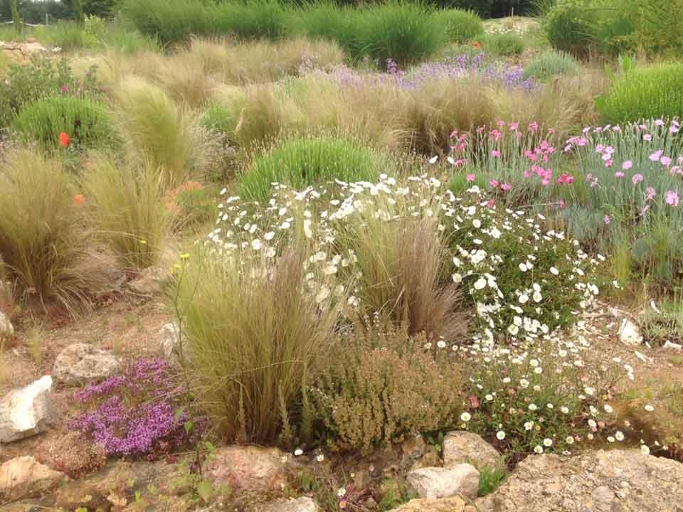 Baulay-garden