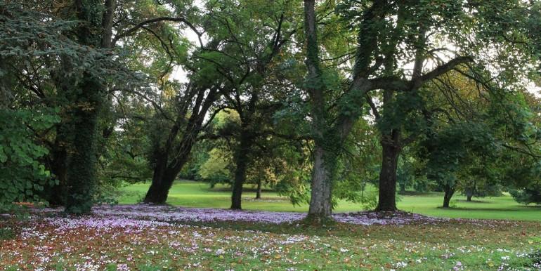 Grand-Bouchet-park