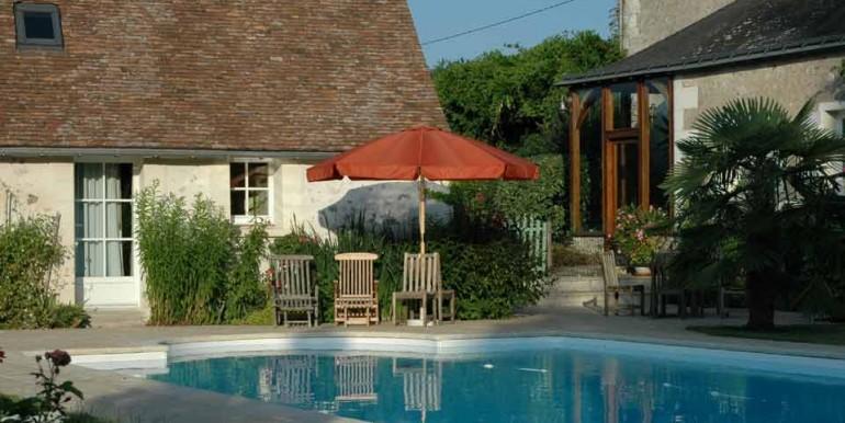LeChatCourant-swimming-pool