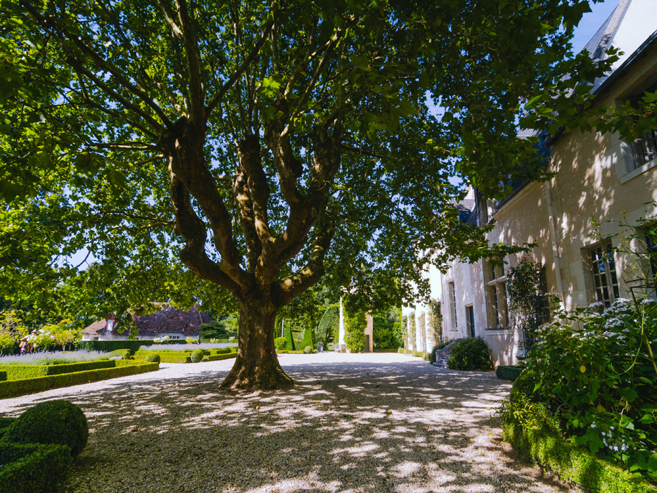 Domaine de Poulaines  Rheum self catering